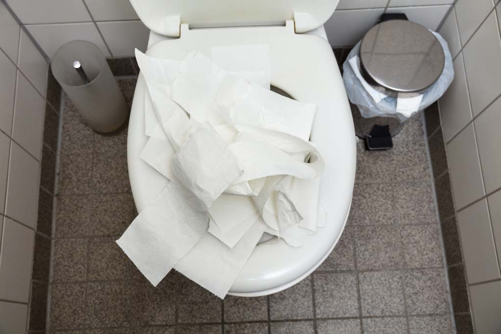 verstopfte Toilette vermeiden
